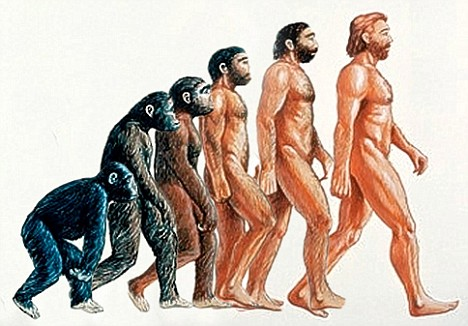 evolution_man