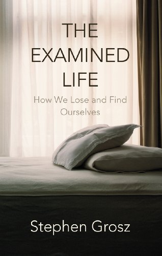 the_examined_life