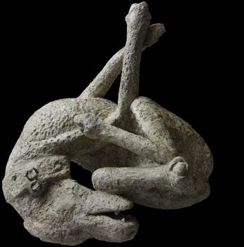 pompeii_dog