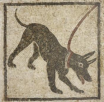 pompeii_dog_mosaic